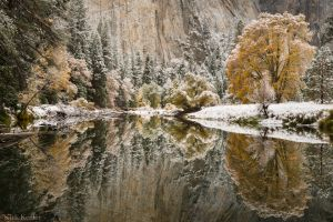 Fall Reflection %26 Snow, Merced River, Yosemite Valley